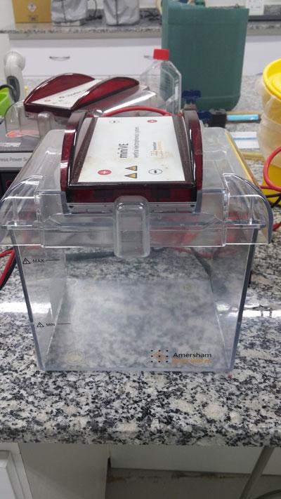 Cuba Vertical de Eletroforese Pequen